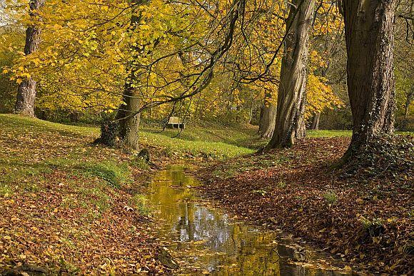 Schlosspark_Bueckeburg_im_Herbst