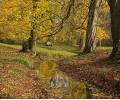 Schlosspark Bueckeburg im Herbst