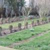 Gräber Jetenburger Friedhof